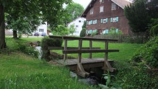 Gartentage_Waal_16-06-04_14