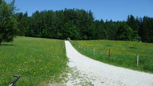Staffelsee_16-05_23