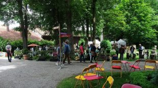 Gartentage_Waal_16-06-04_04